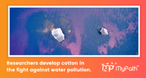 IIT Guwahati Researchers Develop Superhydrophobic Cotton